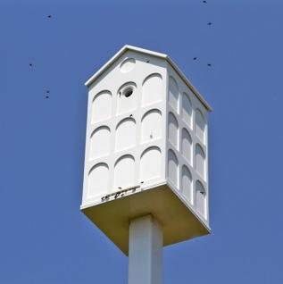 Providing habitat